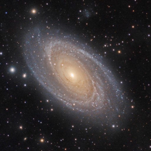 M81 bode's and M82 cigar galaxy
