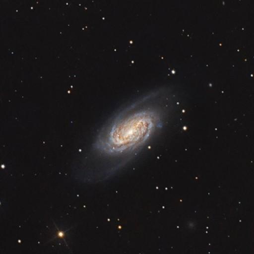 NGC 2903 Galaxy