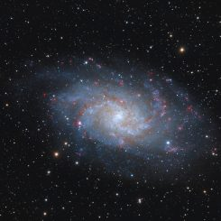 m 33 color videoje