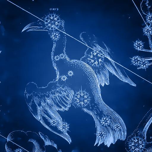 1280px Johann Bayer   Uraniometria   Southern Birds - zdral grus