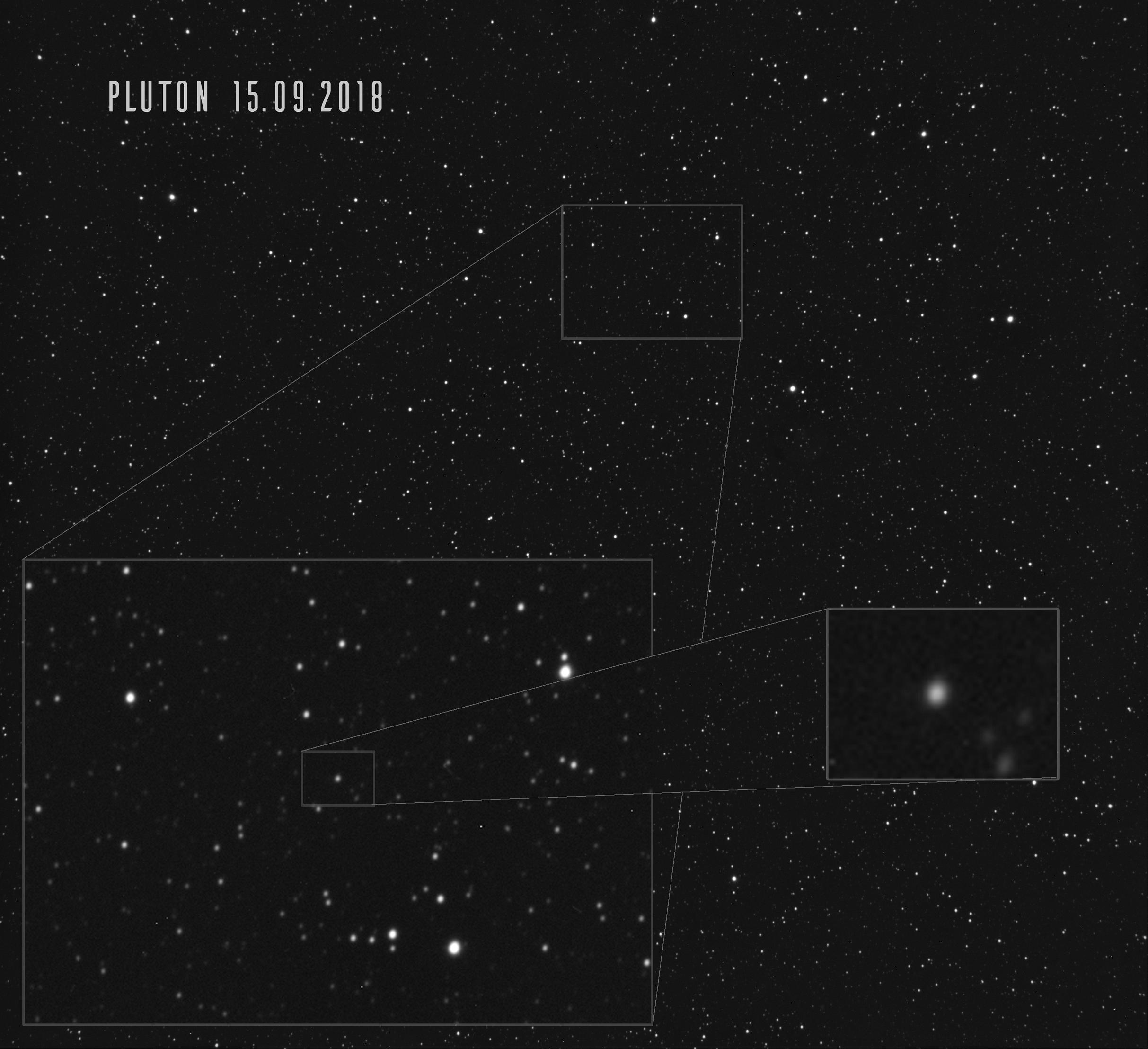 Pluton comp -
