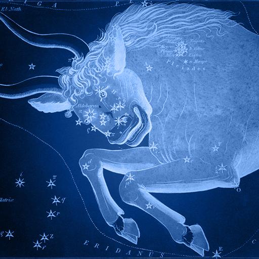 Sidney Hall   Uranias Mirror   Taurus - Bik Taurus