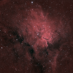Crv 1 245x245 - RIGEL & SURROUNDING NEBULAS